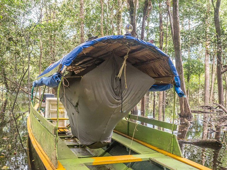 hammock with mosquito net and stand