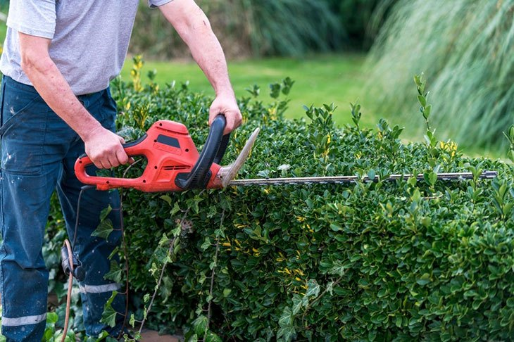 hand held hedge trimmer reviews