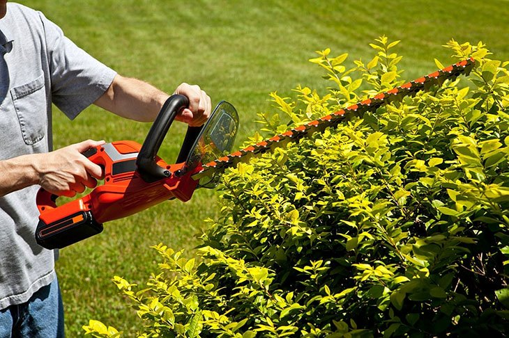 hand held hedge trimmer amazon
